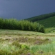 Conservation on the Southern Upland Way