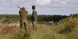 Shooting In The Scottish Borders