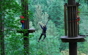 Go Ape At Glentress Experience The Scottish Borders At The Tontine Hotel In Peebles