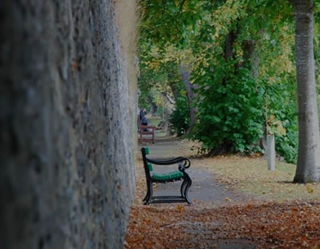 Hotel Packages And Special Offers In Peebles and The Scottish Borders