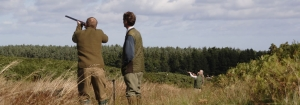 Pheasant Grouse Partridge and Stalking In The Scottish Borders